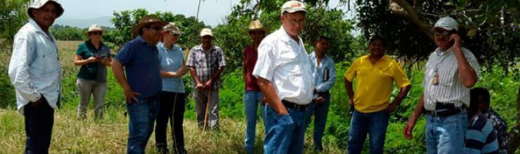 Azunosa apoya prevención de inundaciones en el Valle de Sula
